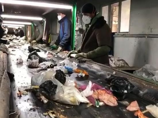 5 мусоросортировочных комплексов появятся в Дагестане