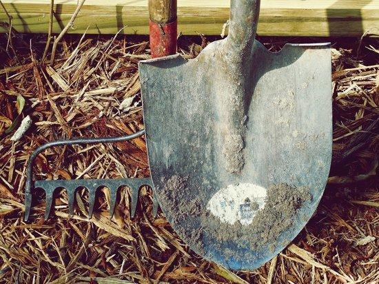 Разбушевавшийся татищевец порезал родню сельхозинструментами