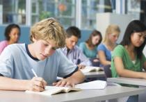 В Оренбуржье будут создавать цифровые центры в сельских школах, опираясь на опыт РБ