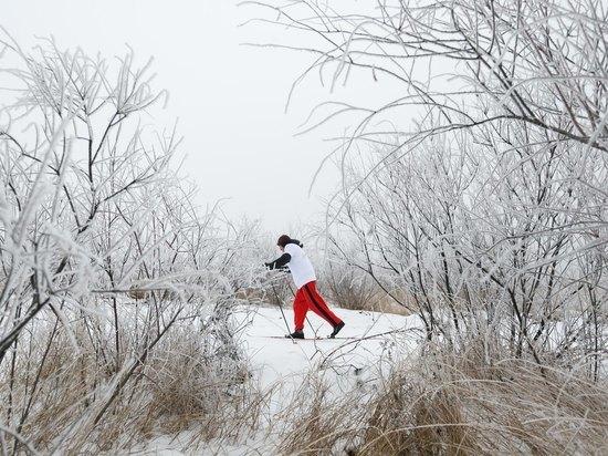 Как выбирать лыжную амуницию, рассказали волгоградцам