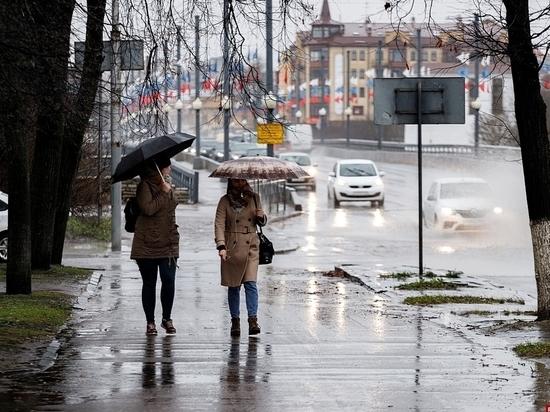 Псковичам не стоит ждать классической зимы