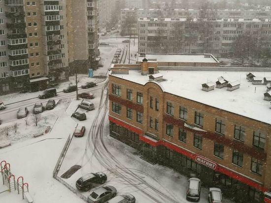 В Пскове наконец-то выпал снег
