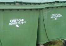 Контейнеров для мусора не хватает в Чите