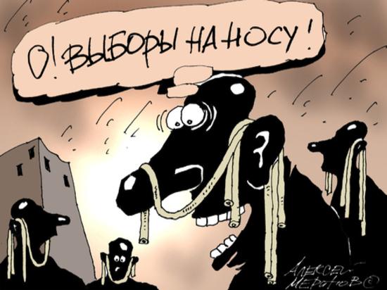 Кто получит депутатский мандат от Хынчештского района?