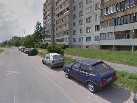Полиция Пскова задержала водителя, подозреваемого в гибели пешехода