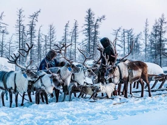 В Госдуме приняли закон о правах коренных народов ЯНАО и других регионов