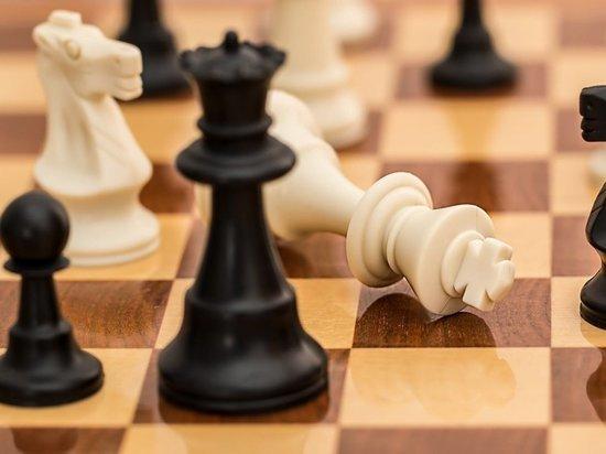 Юные шахматисты Марий Эл привезли медали из Удмуртии