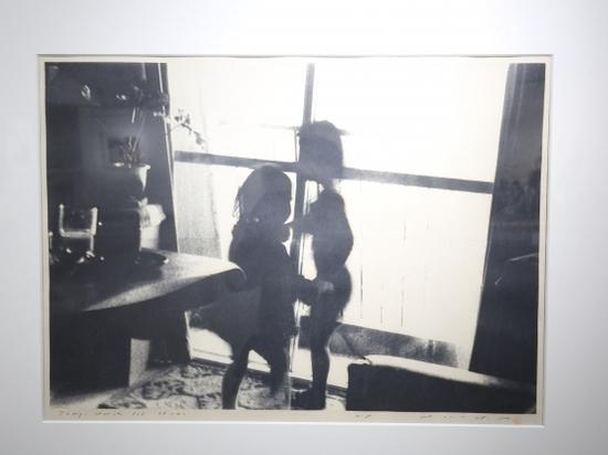 Волгоградцам показали произведения японской печатной графики