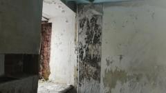Оренбургский памятник истории погубит плесень