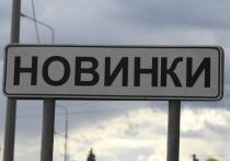 Управлять Новинками станет новый территориальный орган