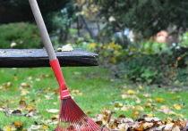 Члена садоводческого товарищества приговорили к штрафу за неучастие в субботнике