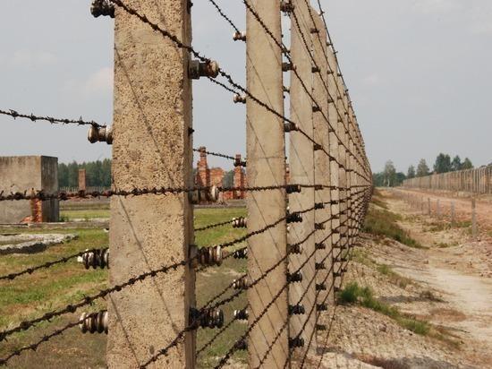 В посольстве РФ ответили на заявление об освобождении Аушвица американцами