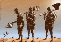 Большая чистка: прокурор перезагружает минлес Иркутской области