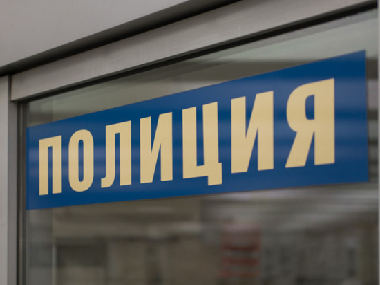 Мать убила 3-летнего сына в Красноярске