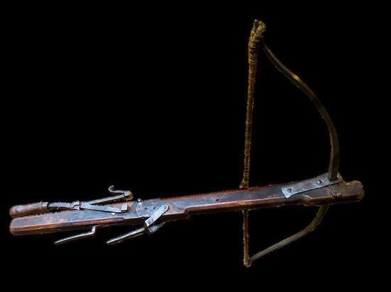 В РФ вступил в силу разрешающий охоту с луком и арбалетом закон