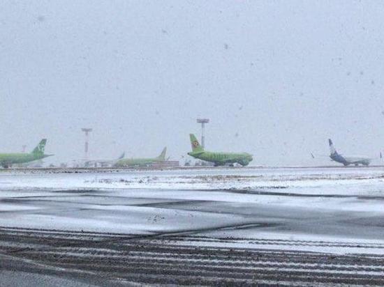Знакомые рассказали о мотивах пассажирки, «заминировавшей» самолет в «Домодедово»