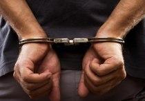 В Новосибирске задержали подозреваемого в грабеже ювелирных магазинов
