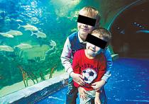 Мужчине, оставившему детей в «Шереметьево», грозит обвинение в краже