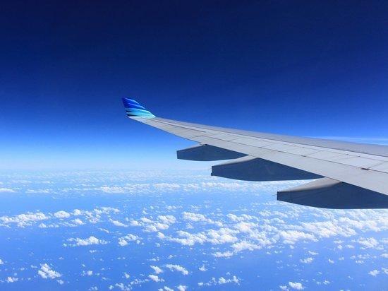 Самолет не долетел до Москвы из-за потасовки пилотов