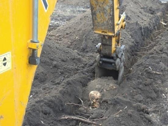 На Дону строители нашли в парке человеческие останки