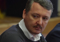 Стрелков ответил на обвинения в крушении