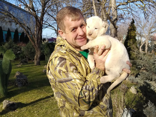 За владельца парка «Тайган» поручился глава республики Сергей Аксенов