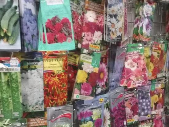 В январе на рынке в Тверской области торговали семенами без документов