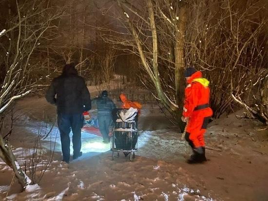 Школьник с подругой провалились под лед у Шуваловского проспекта
