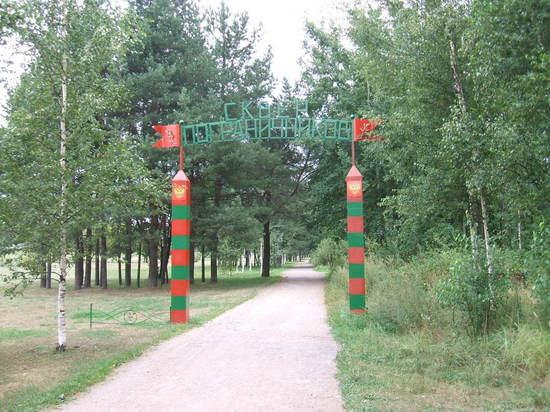 Территории в Петербурге и в Ленобласти могут перейти под федеральное управление