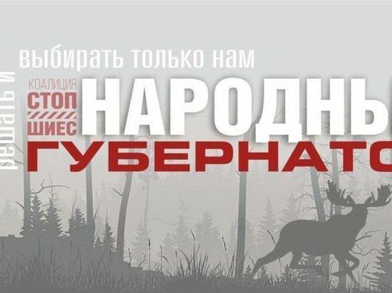 Народного губернатора выбирают жители Архангельской области