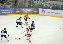 Одна из улиц Нижнего может получить имя в честь хоккеиста Скворцова