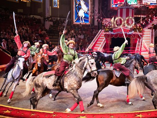 Генеральный директор «Росгосцирка»: «Лишить цирк животных — значит оставить без цирка детей»