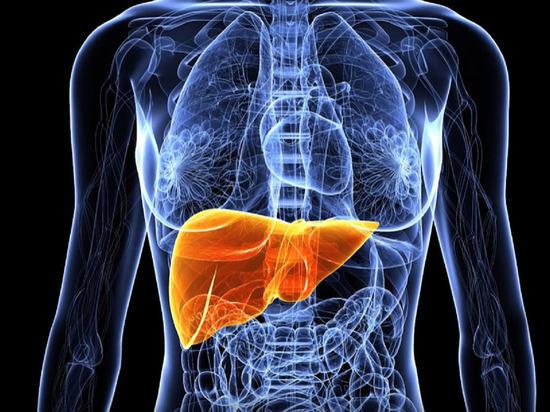 Ученый назвал главный симптом жировой болезни печени