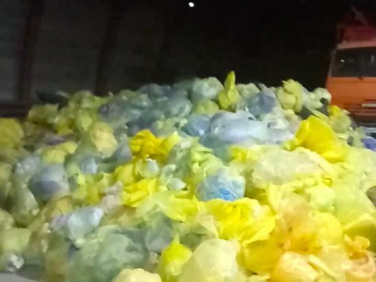В Надыме нашли свалку из медицинских отходов и трупов животных