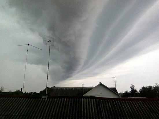 После теплой зимы Тверскую область могут накрыть летние ураганы