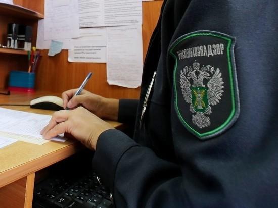 800 тысяч рублей заплатит предприятие — владелец заросшего земельного участка в Ивановской области