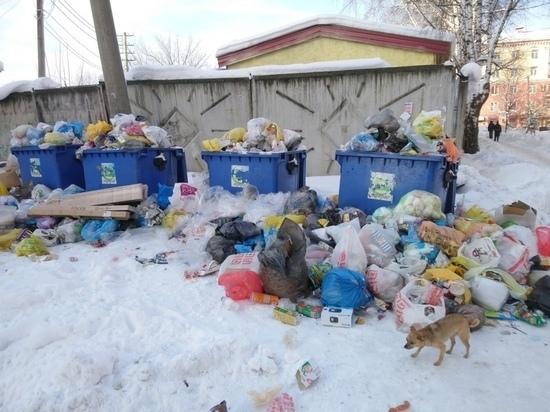 Таких всего пять: Кузбасс вошёл в пятерку «мусорных» регионов