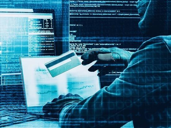 Петербург вошел в пятерку регионов с самым низким уровнем IT-преступности