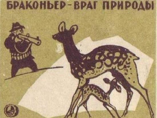 Красносельские полицейские взяли браконьера с поличным