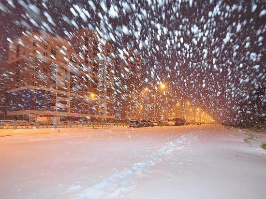 МЧС предупреждает ярославцев о метели