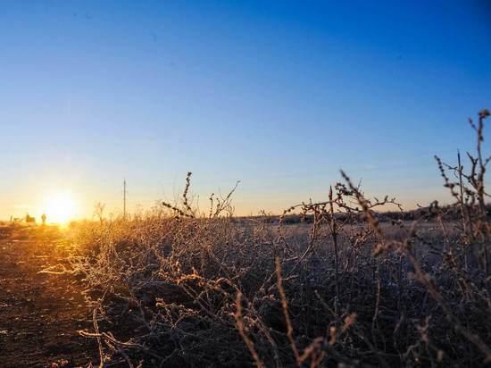 После морозов в Волгоград придет потепление до +2°С