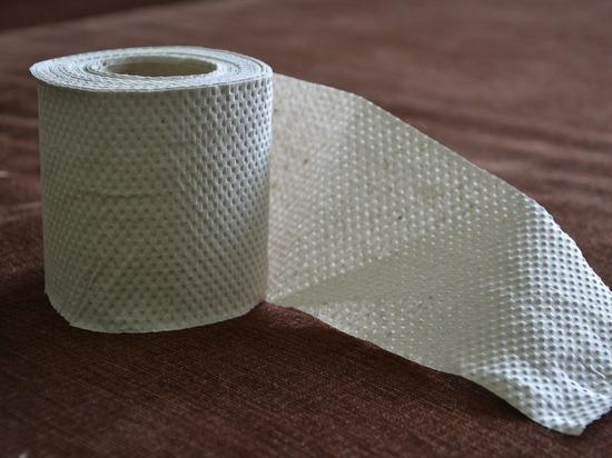 В Карелии пенсионер «отблагодарил» депутатов туалетной бумагой за мизерную прибавку