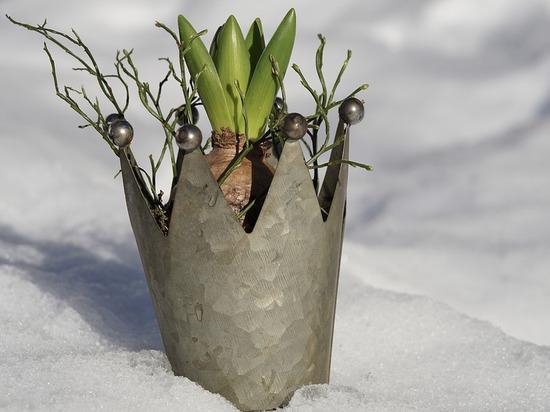 Архангелогородцев просят опасаться падения снега с крыш