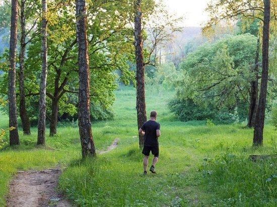 Физические упражнения оказались полезными для пластичности мозга