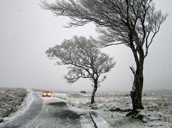В Ростовской области вновь ожидается сильный снег и шквалистый ветер