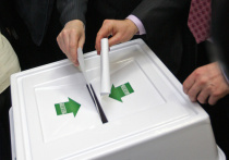 Председатель Центральной избирательной комиссии России Элла Памфилова считает разумной инициативу провести голосование по предложенным президентом поправкам в Конституцию в будний день, объявив его выходным
