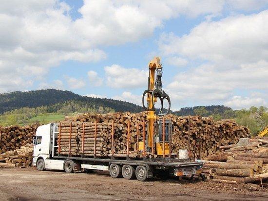 Проект закона о контроле на лесопунктах в Забайкалье примут в одном чтении