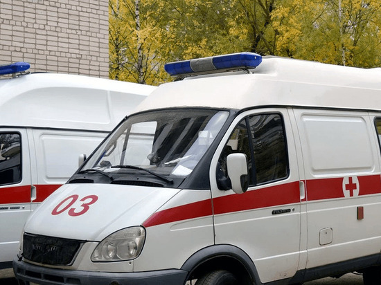 Восемь человек погибли в страшном ДТП на трассе Петербург - Невель