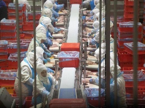 «Тамбовская индейка» - вторая по производству мяса в России