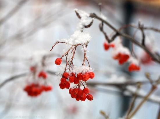 В пятницу в Рязанской области сохранится снежная погода